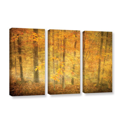 Brushstone Lost In Autumn 3-pc. Gallery Wrapped Canvas Wall Art