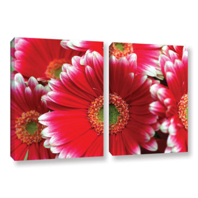 Brushstone Lots A Daisies 2-pc. Gallery Wrapped Canvas Wall Art