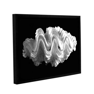 Brushstone Giant Frilled Clam Seashell Tridacna Squamosa Gallery Wrapped Floater-Framed Canvas