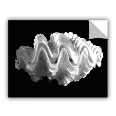 Brushstone Giant Frilled Clam Seashell Tridacna Squamosa Removable Wall Decal