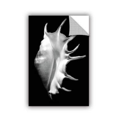 Brushstone Giant Spider Conch Seashell -Lambis-Truncata Removable Wall Decal