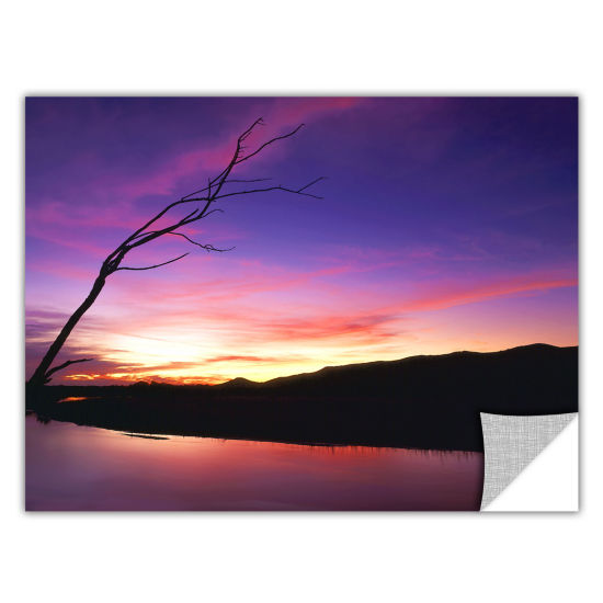 Brushstone Gila River Sunset Removable Wall Decal