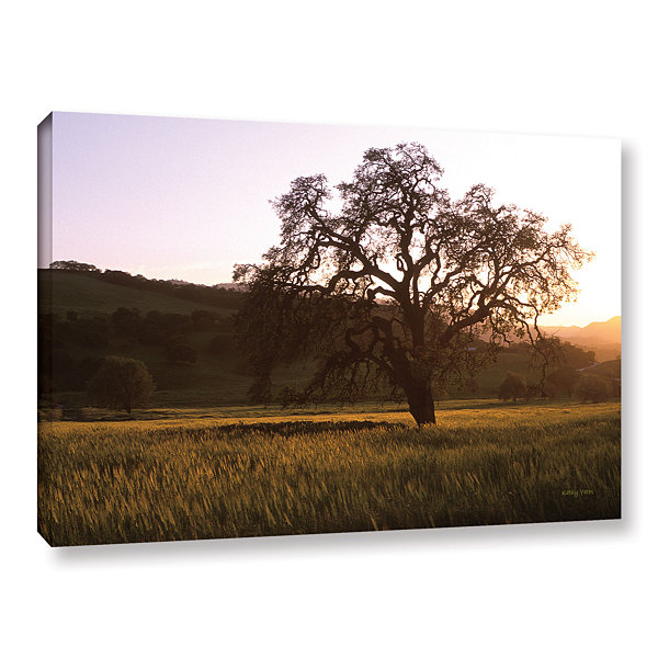Brushstone Golden Hour Gallery Wrapped Canvas