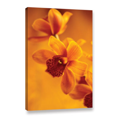 Brushstone Golden Cymbidium Orchid Gallery WrappedCanvas