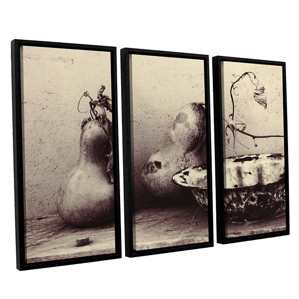 Brushstone Gourds And Bowl 3-pc. Floater Framed Canvas Set