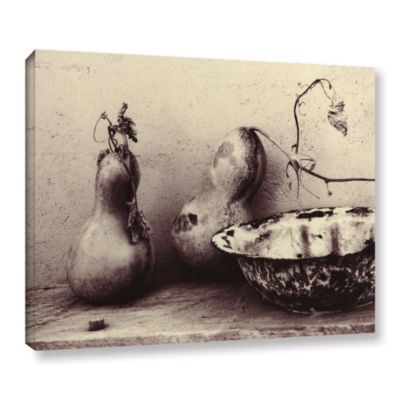 Brushstone Gourds And Bowl Gallery Wrapped Canvas