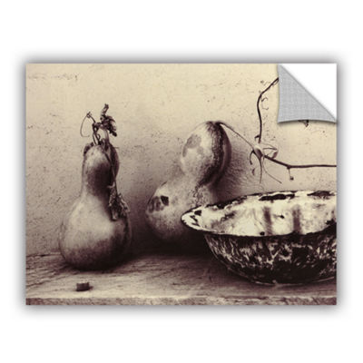 Brushstone Gourds And Bowl Removable Wall Decal
