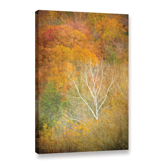 Brushstone In Autumn Gallery Wrapped Canvas