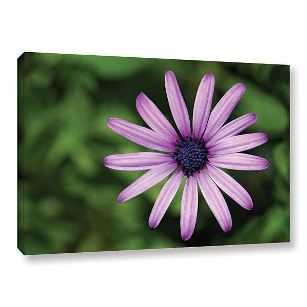 Brushstone In the Garden Gallery Wrapped Canvas