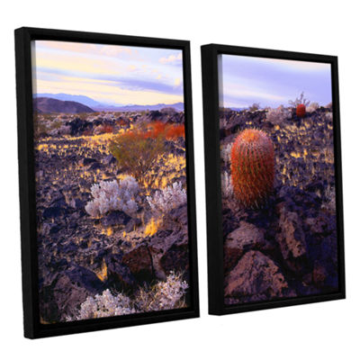 Brushstone In The Mojave 2-pc. Floater Framed Canvas Wall Art