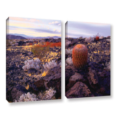Brushstone In the Mojave 2-pc. Gallery Wrapped Canvas Set
