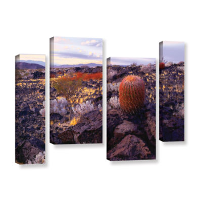 Brushstone In the Mojave 4-pc. Gallery Wrapped Canvas Staggered Set