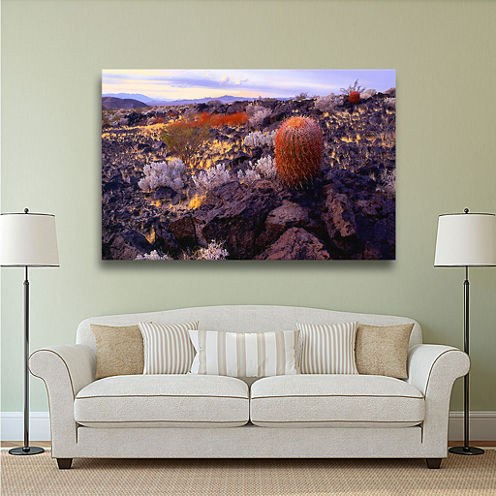 Brushstone In The Mojave Gallery Wrapped Canvas Wall Art