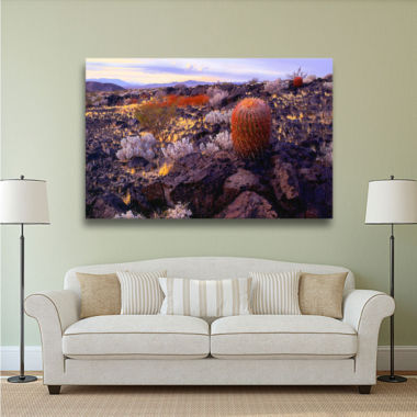 Brushstone In the Mojave Gallery Wrapped Canvas