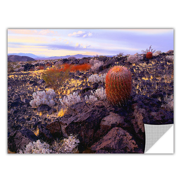 Brushstone In the Mojave Removable Wall Decal