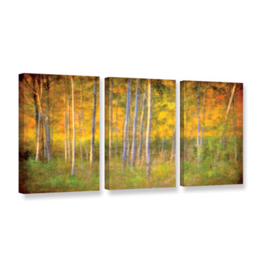 Brushstone Into the Wood 3-pc. Gallery Wrapped Canvas Set