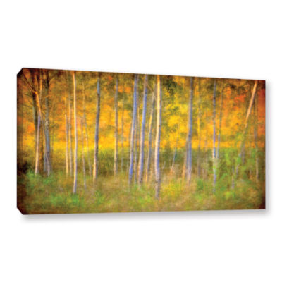 Brushstone Into the Wood Gallery Wrapped Canvas
