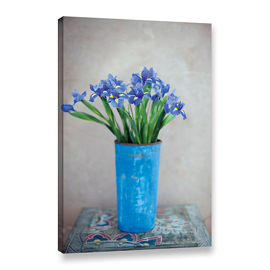 Brushstone Iris Flowers Gallery Wrapped Canvas
