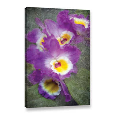 Brushstone Irises Gallery Wrapped Canvas