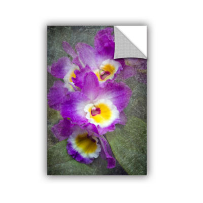 Brushstone Irises Removable Wall Decal