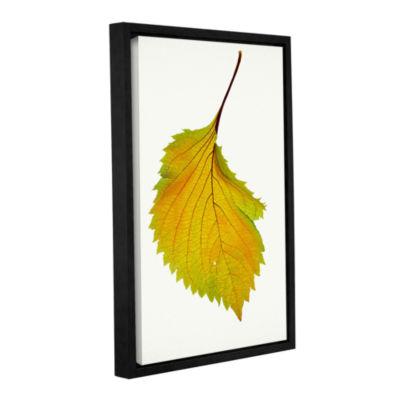 Brushstone Iris Gallery Wrapped Floater-Framed Canvas