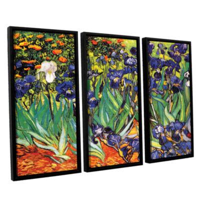 Brushstone Irises In The Garden 3-pc. Floater Framed Canvas Wall Art