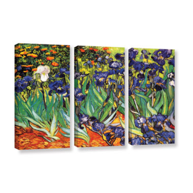 Brushstone Irises in the Garden 3-pc. Gallery Wrapped Canvas Set