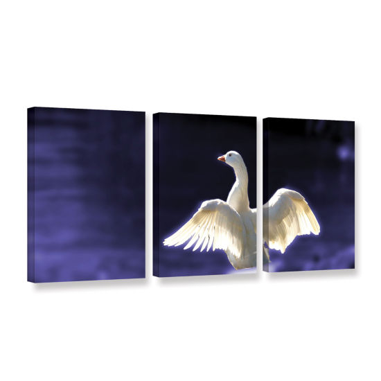 Brushstone Goosewings 3-pc. Gallery Wrapped CanvasSet