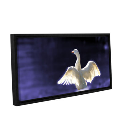 Brushstone Goosewings Gallery Wrapped Floater-Framed Canvas