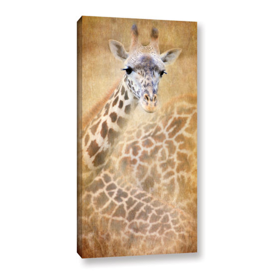 Brushstone Giraffe Gallery Wrapped Canvas