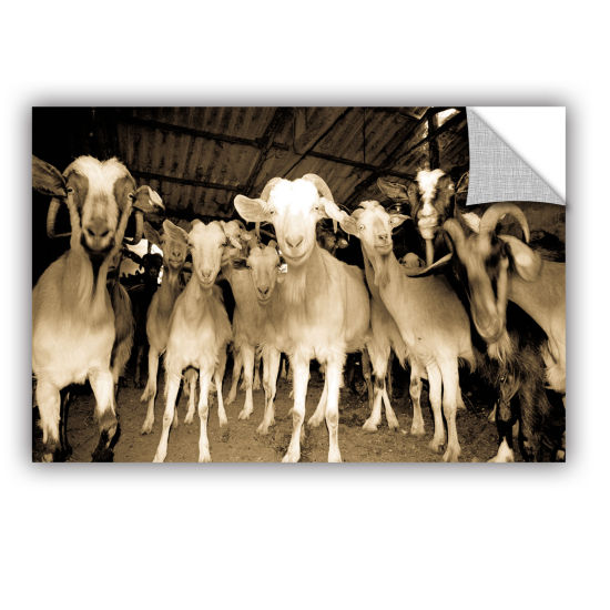 Brushstone Goats Strike A Pose Removable Wall Decal