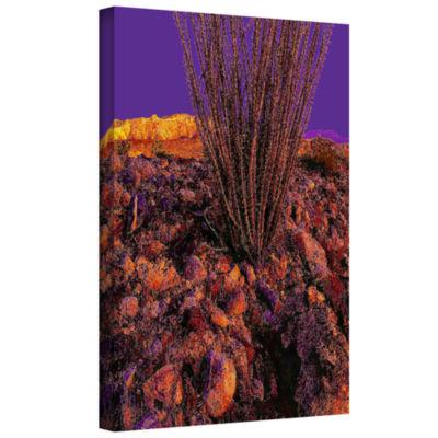 Brushstone Yuma Desert Dawn Gallery Wrapped CanvasWall Art