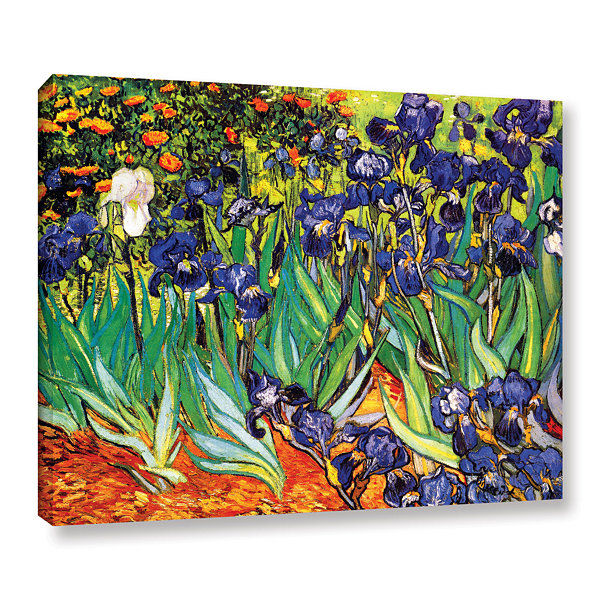 Brushstone Irises in the Garden Gallery Wrapped Canvas