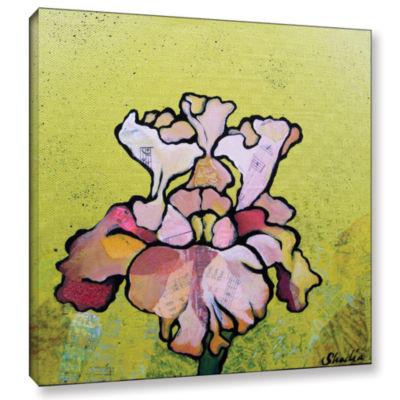 Brushstone Iris IV Gallery Wrapped Canvas