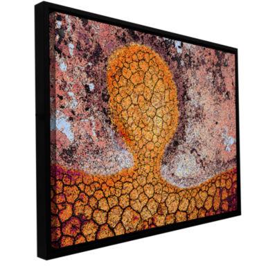 Brushstone Iktomi Gallery Wrapped Floater-Framed Canvas Wall Art
