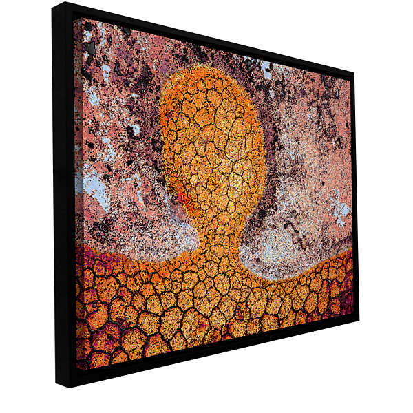Brushstone Iktomi Gallery Wrapped Floater-Framed Canvas Wall Art