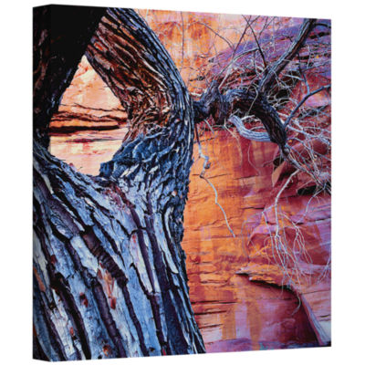 Brushstone In The Escalante Gallery Wrapped CanvasWall Art