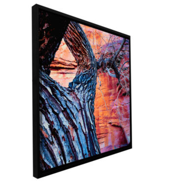 Brushstone In The Escalante Gallery Wrapped Floater-Framed Canvas Wall Art