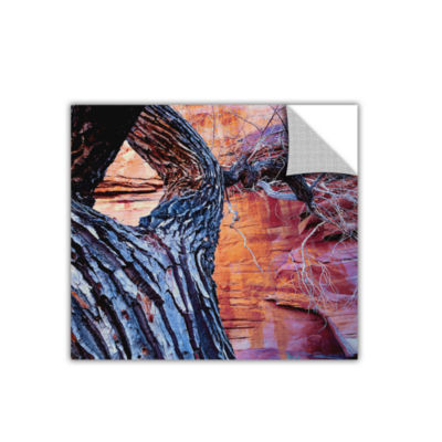 Brushstone In The Escalante Removable Wall Decal