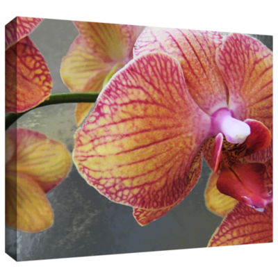 Brushstone Orchid Study Gallery Wrapped Canvas Wall Art