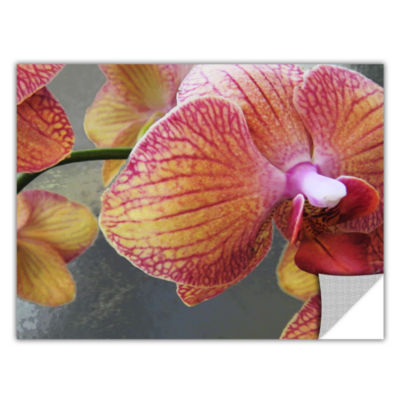 Brushstone Orchid Study Removable Wall Decal