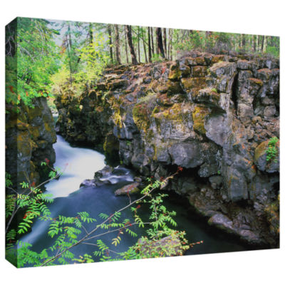 Brushstone Rogue River Gorge Gallery Wrapped Canvas Wall Art