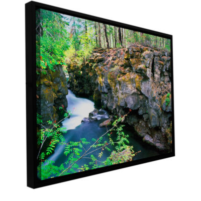 Brushstone Rogue River Gorge Gallery Wrapped Floater-Framed Canvas Wall Art