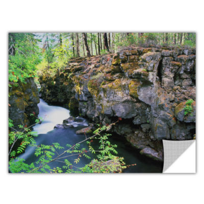 Brushstone Rogue River Gorge Removable Wall Decal