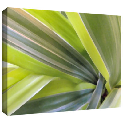 Brushstone Natural Selection 6 Gallery Wrapped Canvas Wall Art
