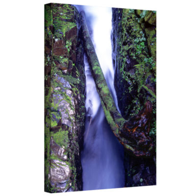 Brushstone Sol Duc River Slot Gallery Wrapped Canvas Wall Art