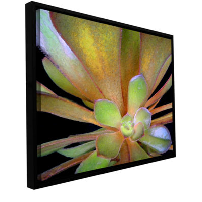 Brushstone Suculento Estudio Gallery Wrapped Floater-Framed Canvas Wall Art