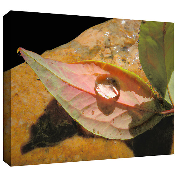 Brushstone Natural World Gallery Wrapped Canvas Wall Art