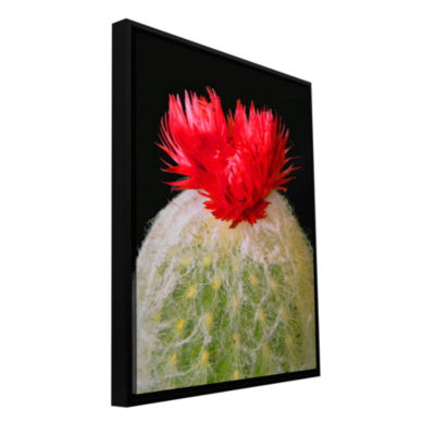 Brushstone Velludo Cacto 2 Gallery Wrapped Floater-Framed Canvas Wall Art