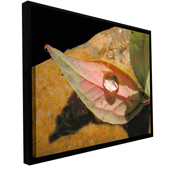 Brushstone Natural World Gallery Wrapped Floater-Framed Canvas Wall Art